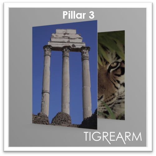 Pillar 3