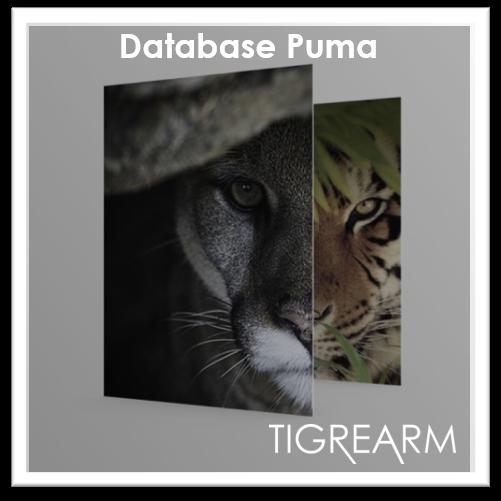 Database-Puma