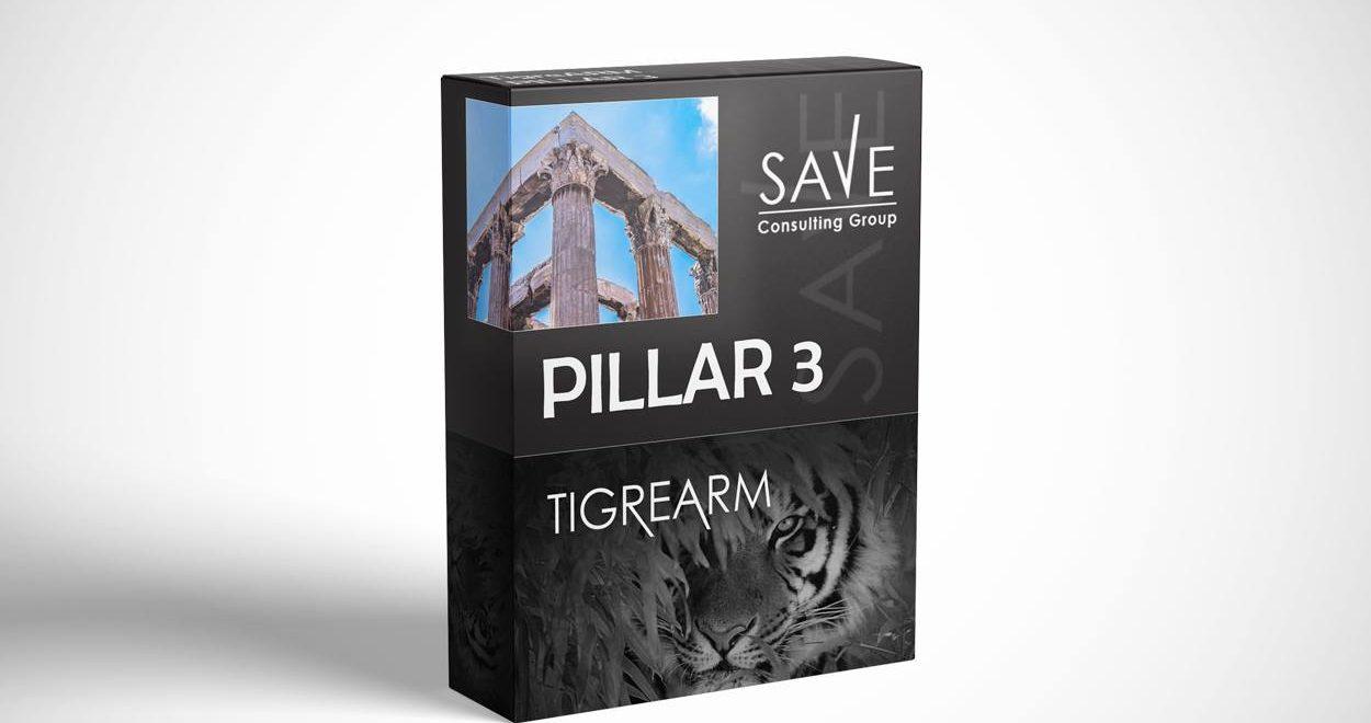 Software_Box_Mockup_pillar3
